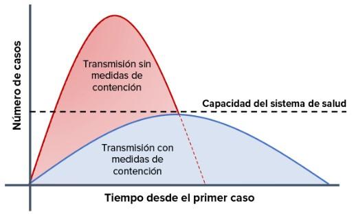 grafico sistema sanitario