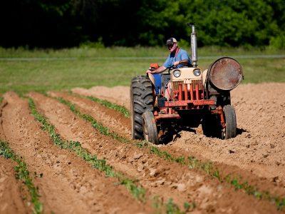 Tractor-labrando